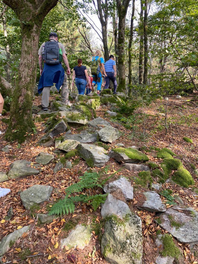Grüne Teilnehmerinnen und Teilnehmer wandern in der Rhön